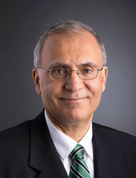 Saeed Moaveni